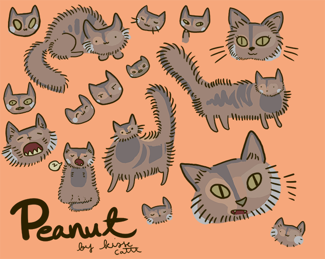 several drawings of peanut the cat drawn by kissecatte