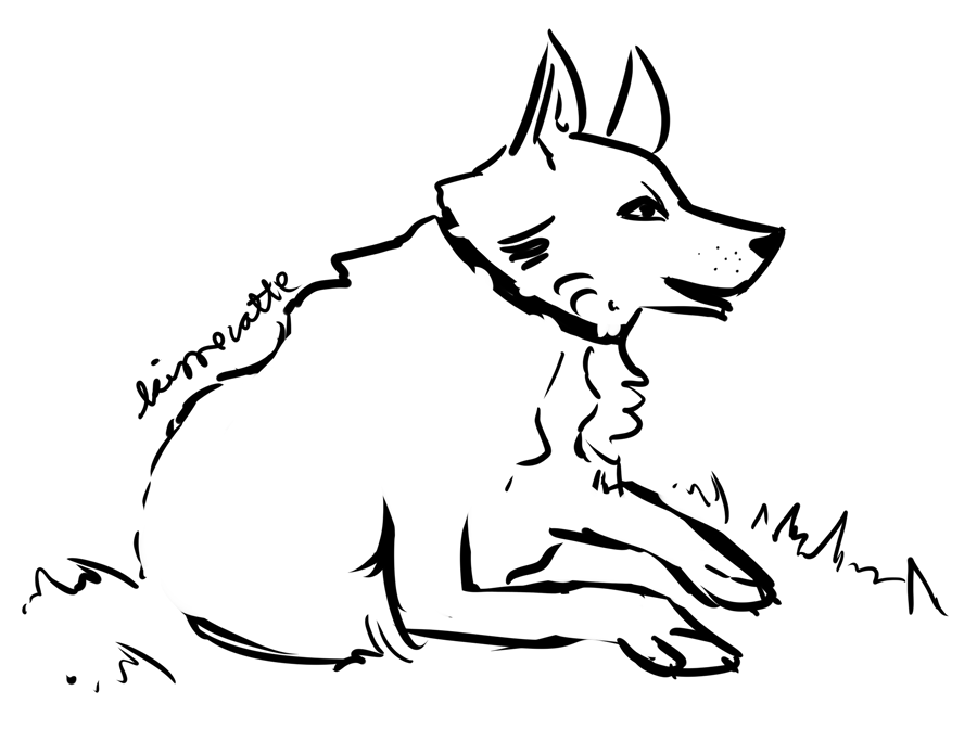 digital drawing of a dog by kissecatte