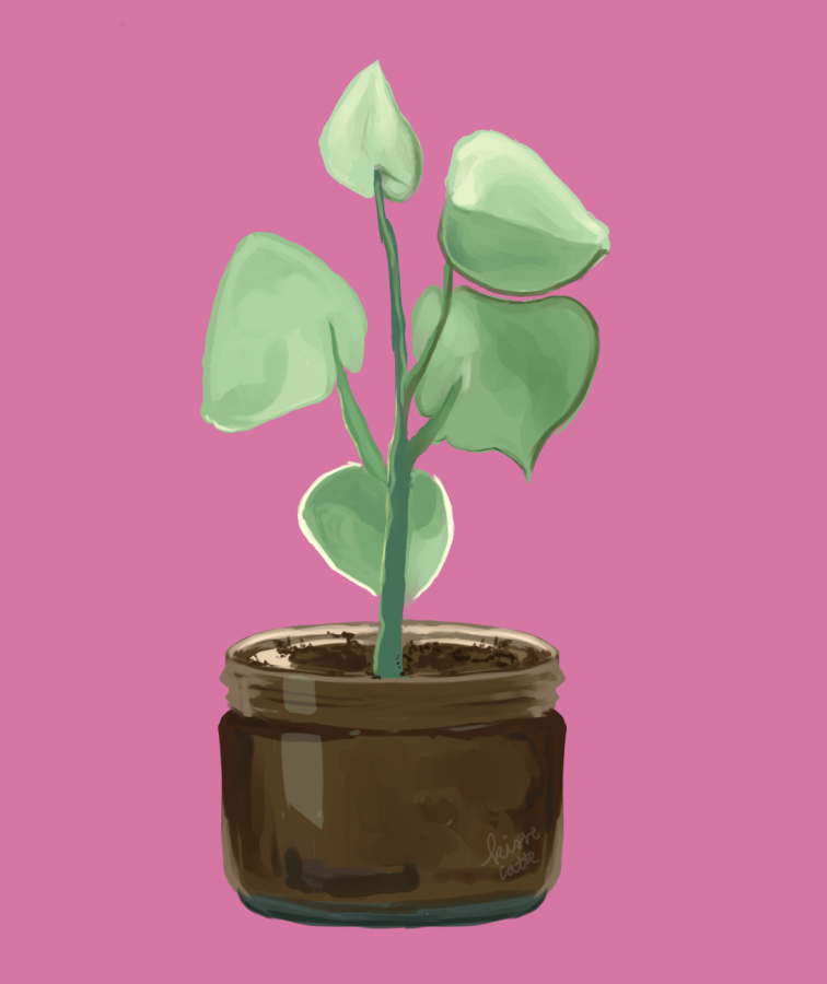digital painting of a potted plant made by kissecatte