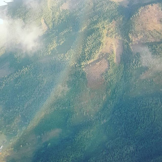 photo of rainbow above a norwegian forest, taken from a plane.